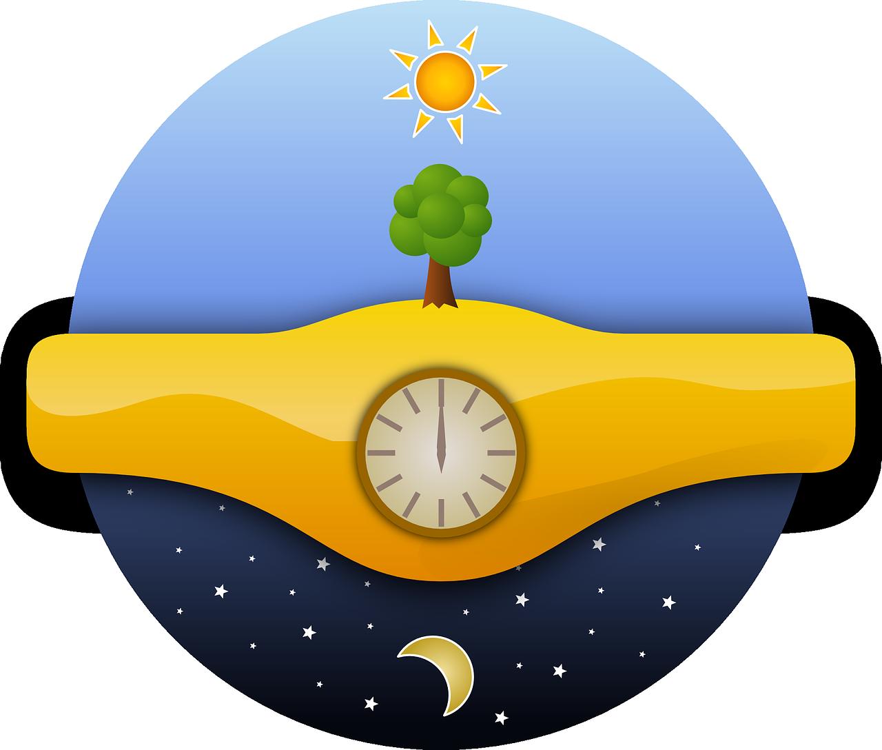 sun, tree, watch